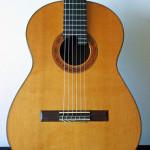 2002 Hernandez Cedar Indian (1)